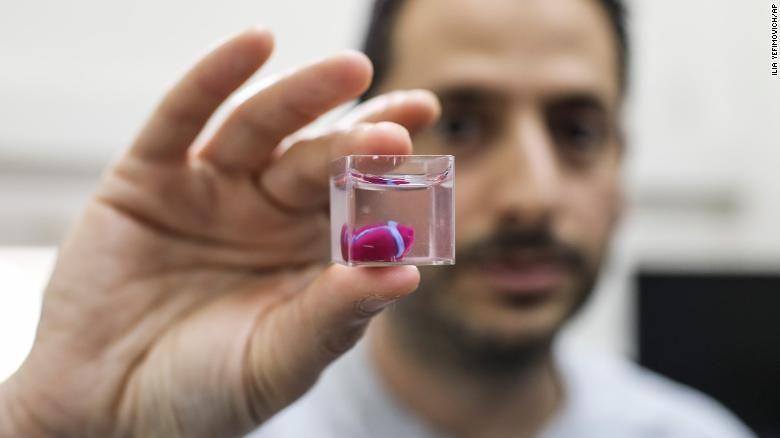 Путем 3D-печати впервые создана модель человеческого сердца