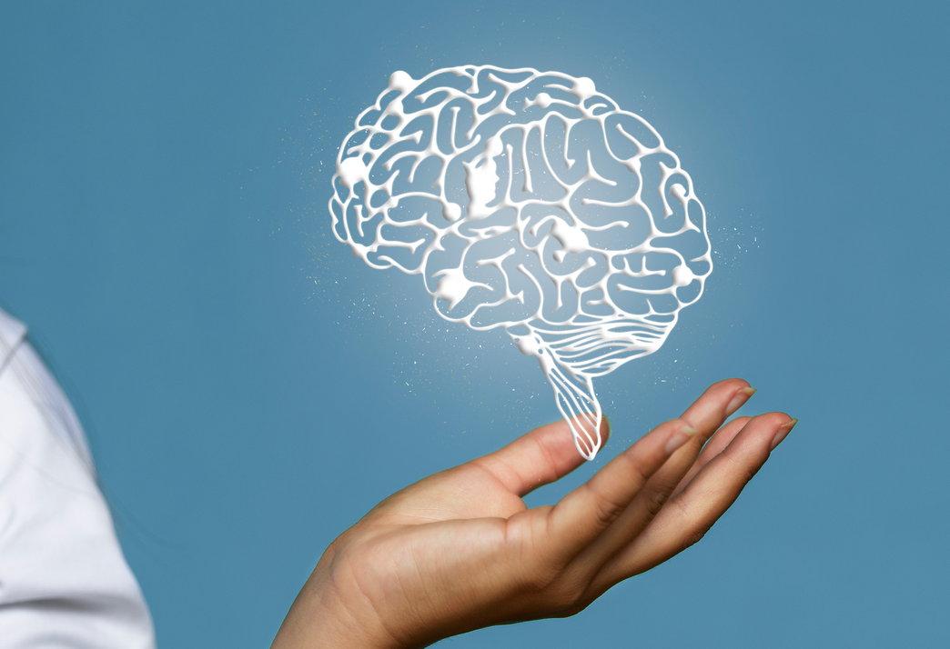 Создан органоид, проявляющий нейронную активность идентичную мозгу недоношенных детей