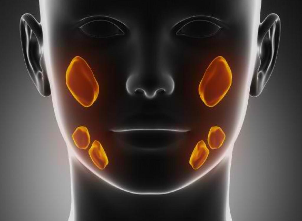 Японскими учеными разработан функциональный органоид слюнной железы