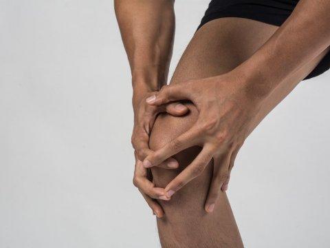 Стволовые клетки сухожилий могут препятствовать образованию рубца после травмы